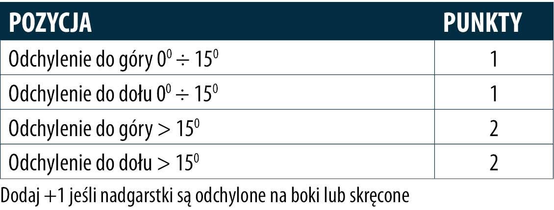 tabela nadgarstki
